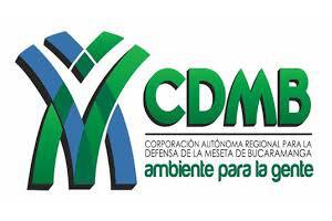 c-cdmb