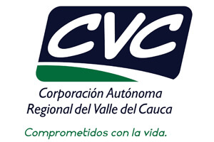 c-cvc